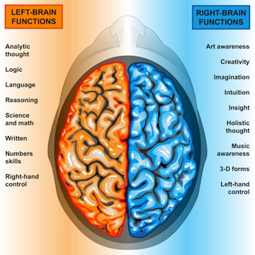 Who are you?- Are you a right or left brain thinker?- Find out here: