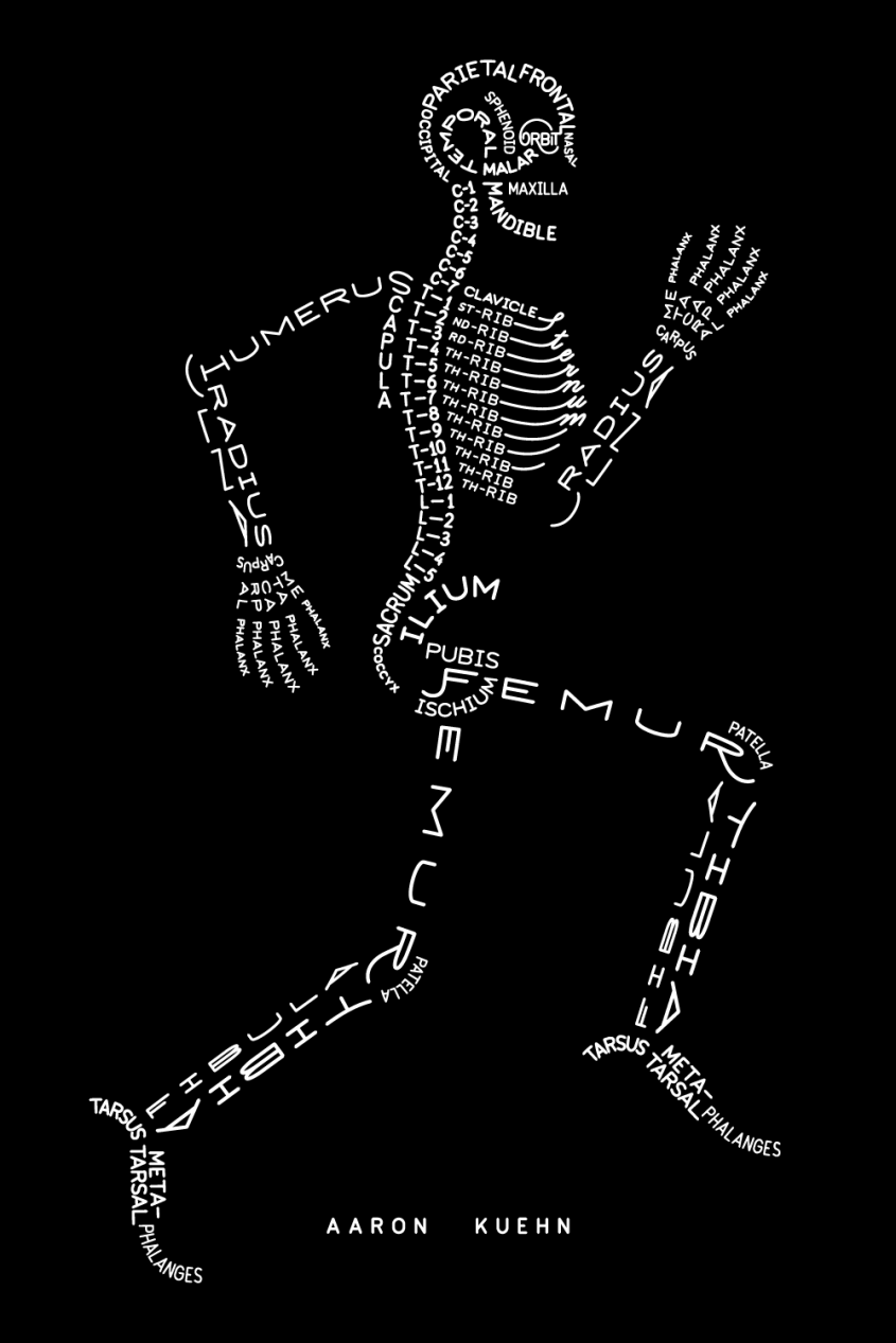 Anatomically Correct Version of Skeleton!