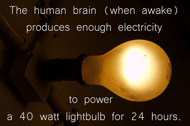 interesting-science-facts-12-pics_8