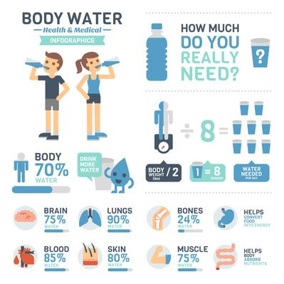 504581947-Health-Nutrition-body-water-infographics.jpg.resize.710x399