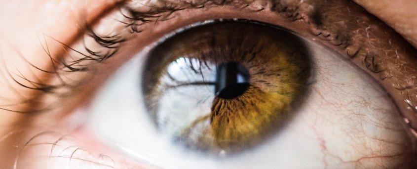 eyeballmicrobiome_1024